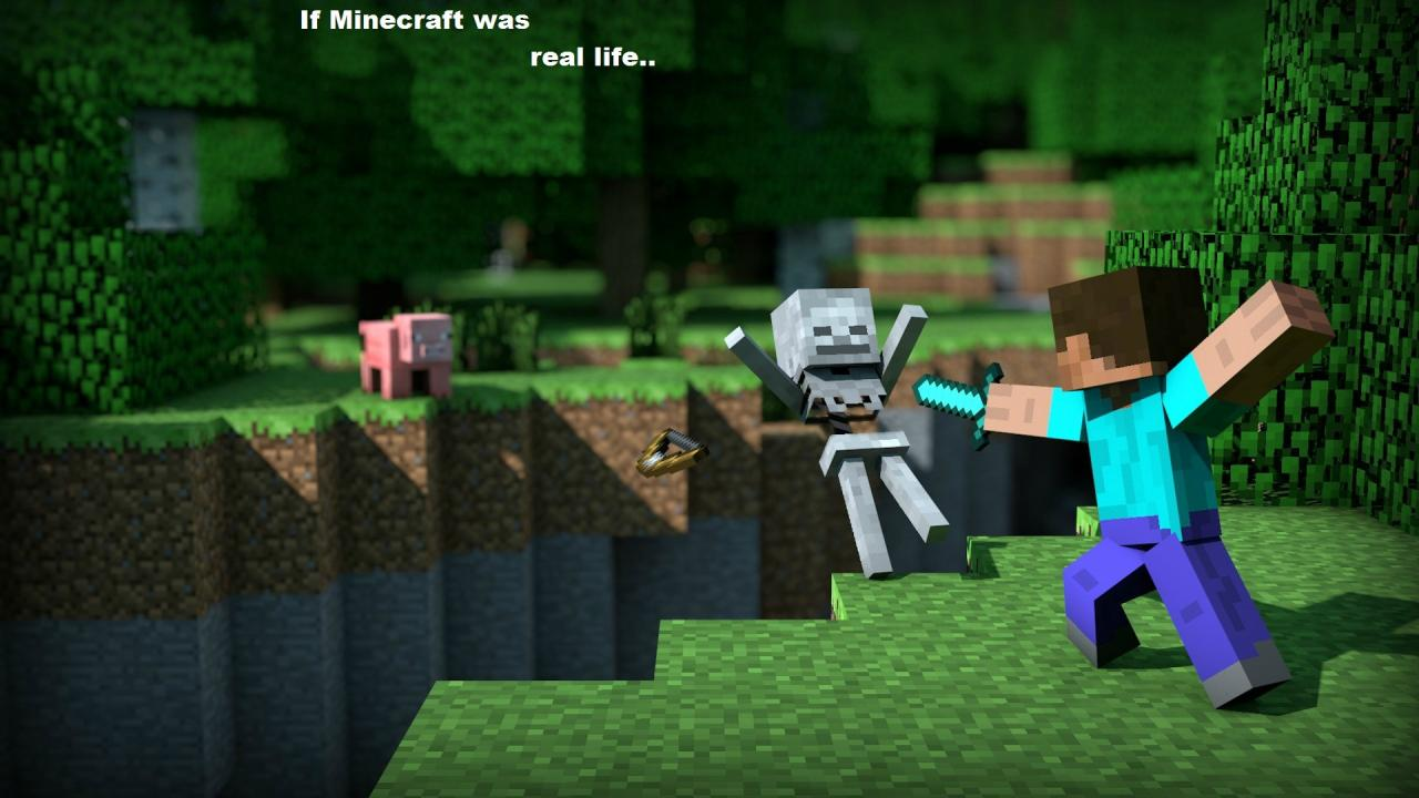 this-is-minecraft_4834805_lrg